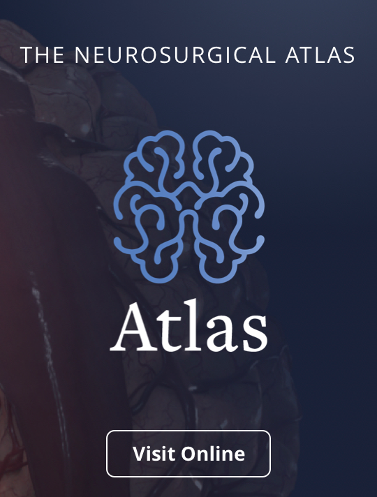 The Neurosurgical Atlas